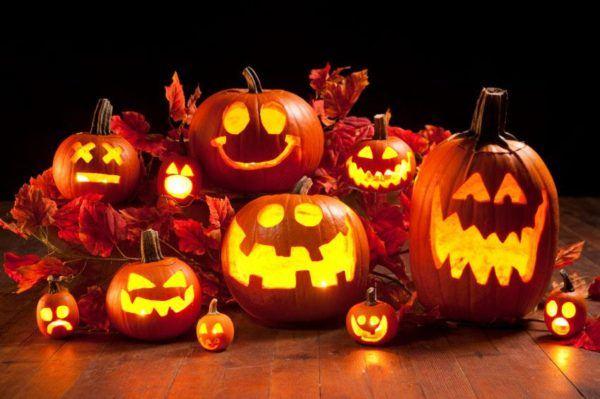 Diferentes calabazas de Halloween
