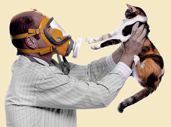 tienes alergia a las mascotas